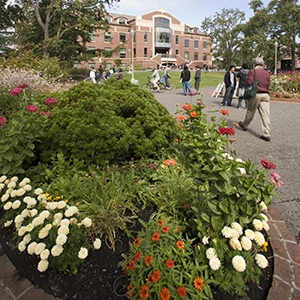 Doyle library with flowers in foreground